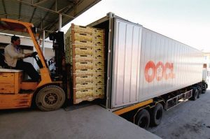 driver forklift goods into container