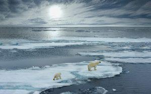 heavy fuel oil ban in Arctic Ocean