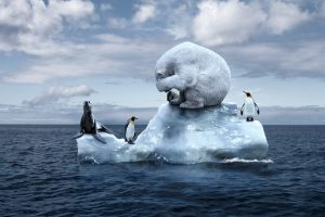 Norway proposes complete ban of HFO in Svalbard