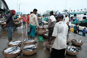 Illegal fishing undermines Indonesia's sovereignty and local livelihood