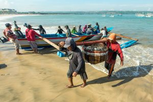 New World Bank funding to improve sustainability of Indonesia's fisheries
