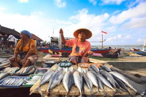 Saving Southeast Asia from illegal fishing