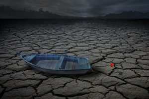 Water scarcity a huge obstacle to use of renewable bioenergy