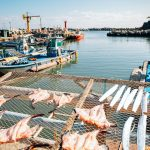 The greying problem of South Korean fishing industry