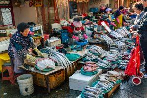 South Korea needs to reconsider fisheries conservation effort