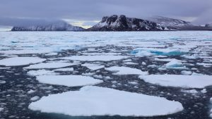 NGOs condemn lack of action by IMO on Arctic climate crisis