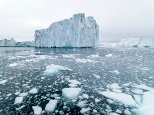 IMO must act on black carbon emissions, says Clean Arctic Alliance